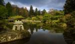 A tourou stone lantern adorns the edge of this pond in Seattle's Japanese Garden | LotsaSmiles Photography