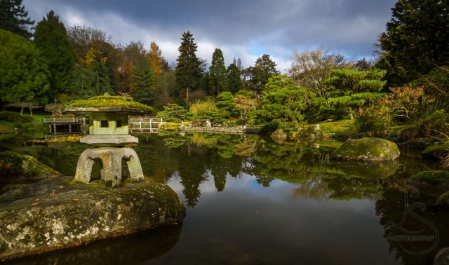 A tourou stone lantern adorns the edge of this pond in Seattle's Japanese Garden | LotsaSmiles Photography