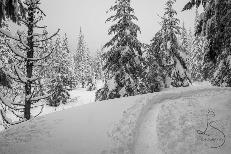 The packed snowshoe trail to June Lake | LotsaSmiles Photography
