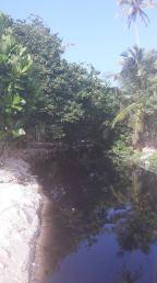 strandflod