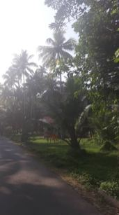 strandvej3