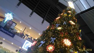 Christmas tree in the airport!
