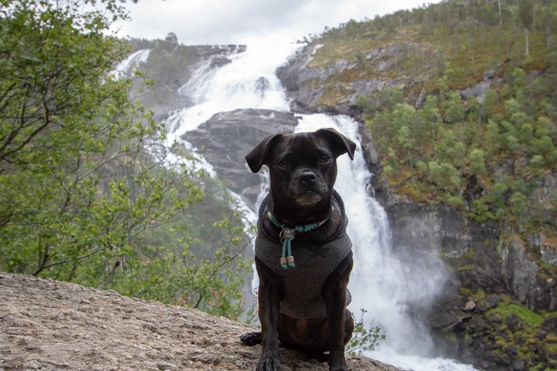Die Wasserfälle in Husedalen