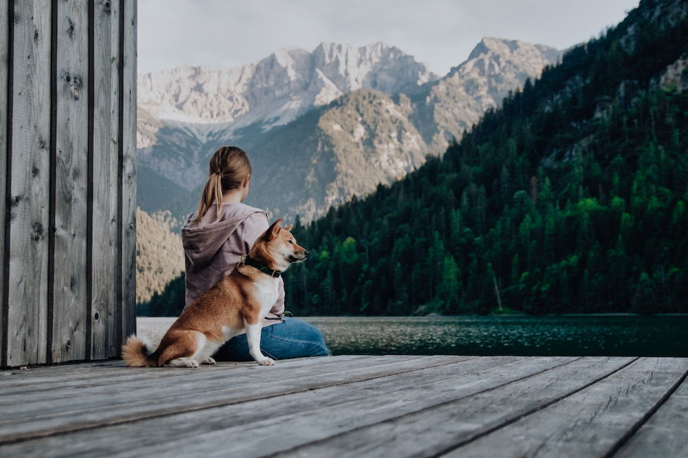 Plansee mit Hund