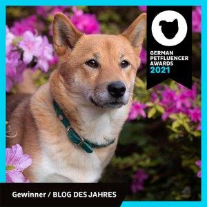 german petfluencer awards 2021