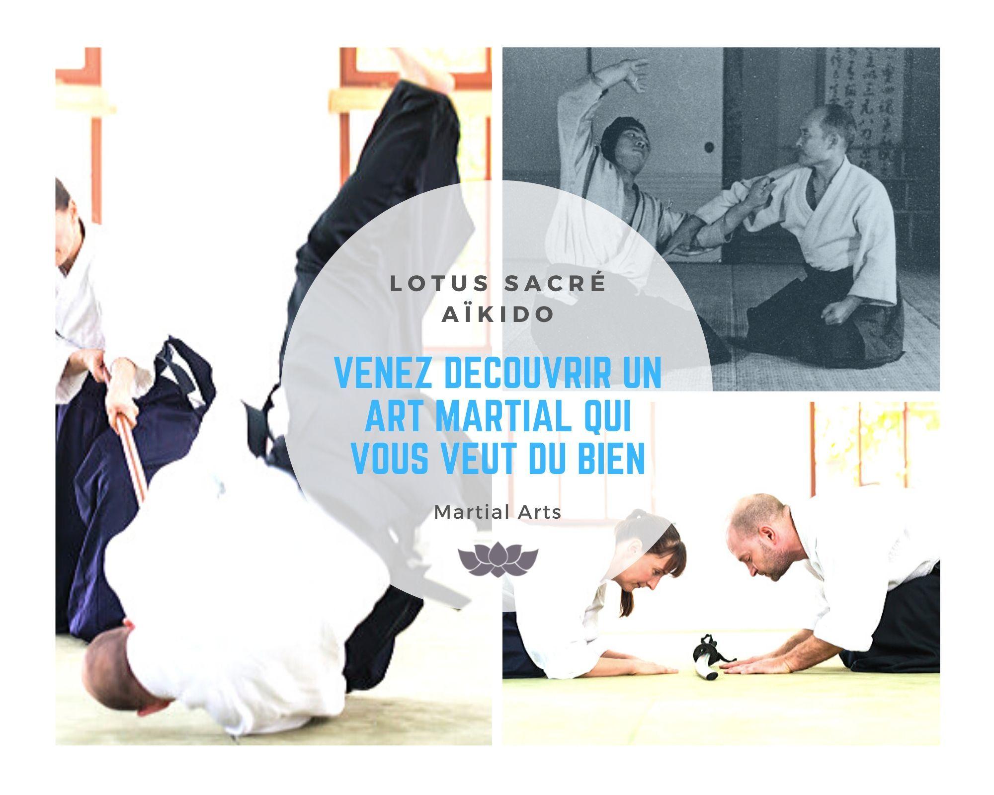 Aikido, Matial Arts