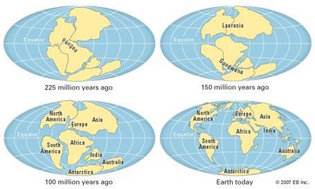Continental Drift Theory