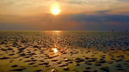 Droogvallen op het wad op de waddenzee tijdens ondergaande zon