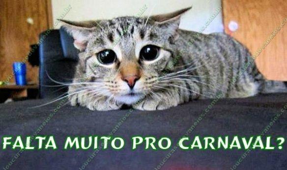 Gato Carnaval