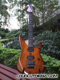 Washburn N4 custom replica