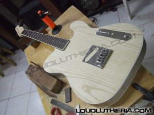 Telecaster custom hollow body