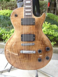 Les Paul Integral