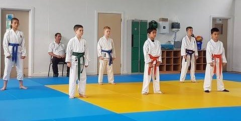 Traditional, Modern and Sport Karate