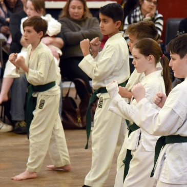 Self-Control, Not Violence, Is The Result Of Teaching Karate To Children