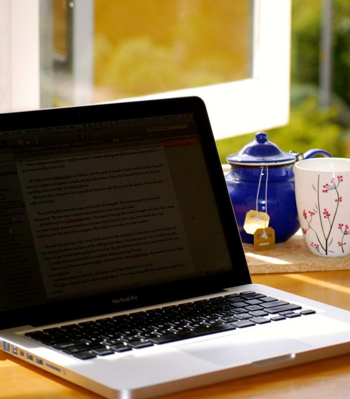 Desk and view at Varuna