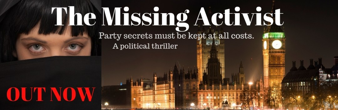 The Missing Activist political thriller by Louise Burfitt-Dons ISBN 9780953852284