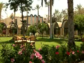 Oasis Hotel Cairo - gardens