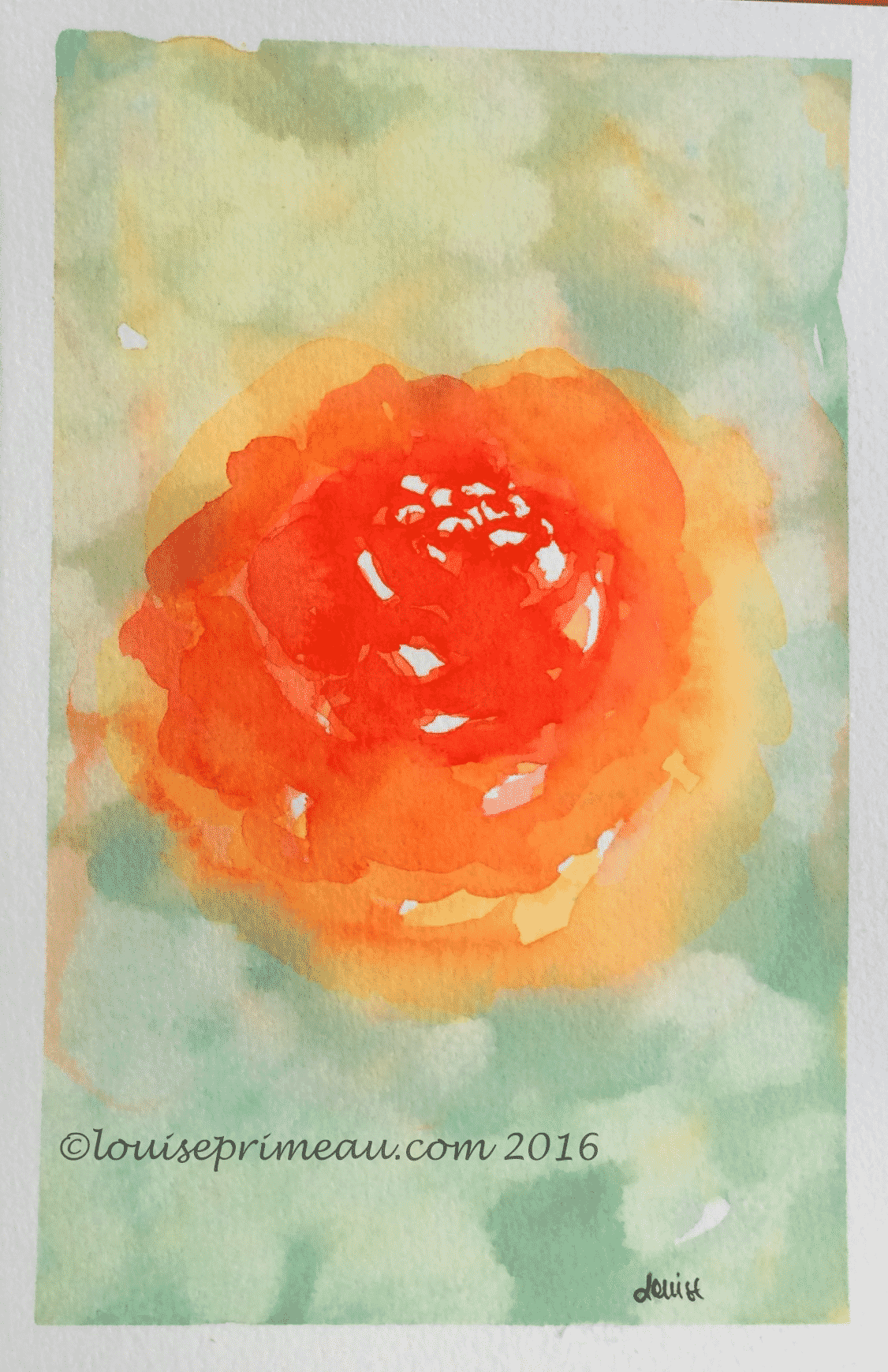 loosely painted watercolour rose