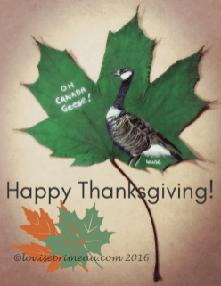 Canada goose painted on leaf