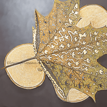 painted leaf transformed in app