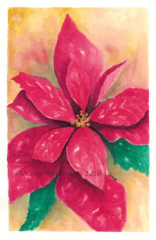 poinsettia in watercolour