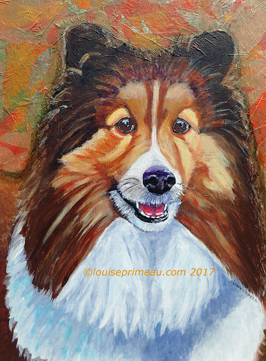 """Anticipation"" mixed media portrait of Cody the Sheltie with Gelli printed background"