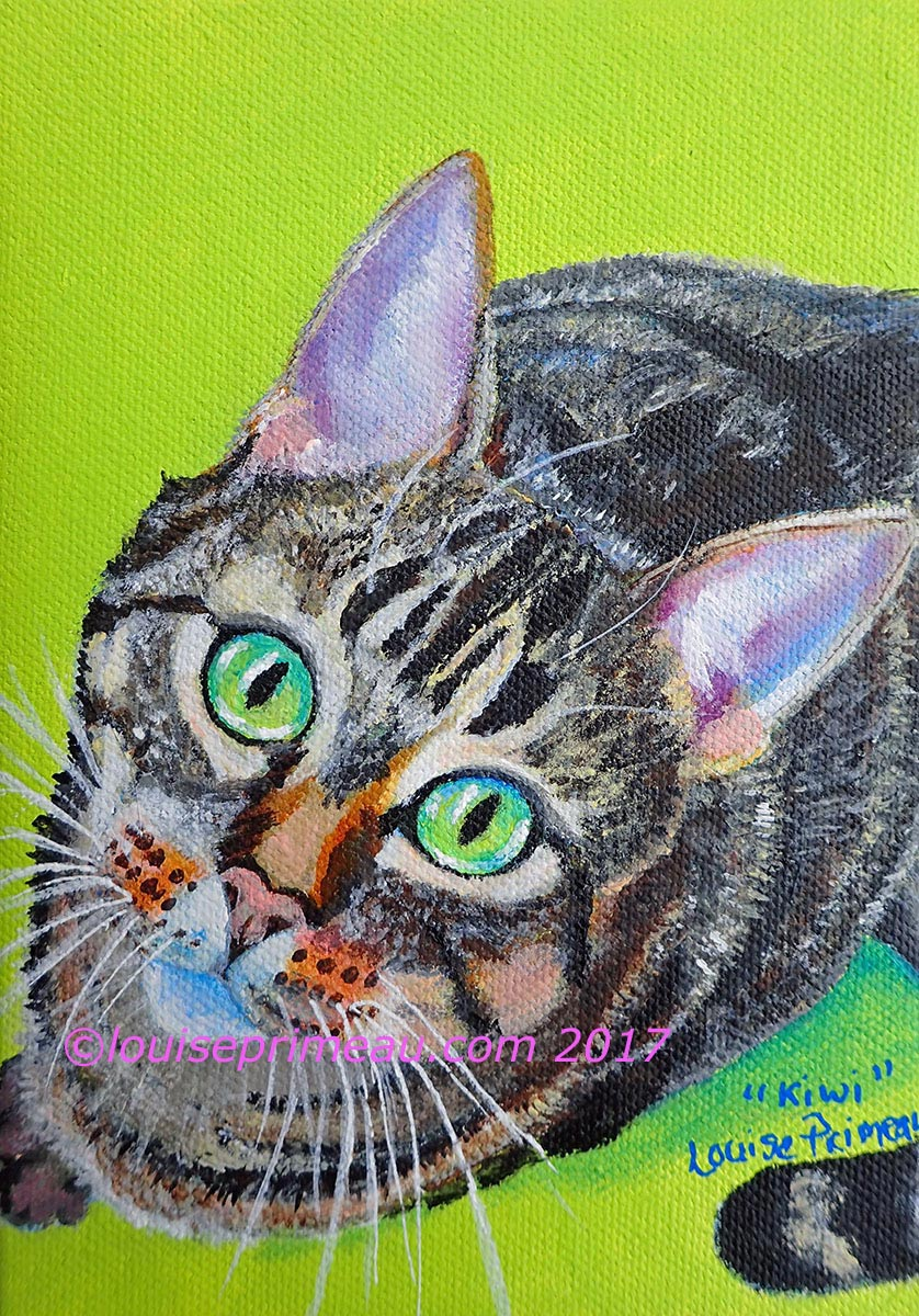completed cat portrait of Kiwi on 5X7 gallery wrapped canvas