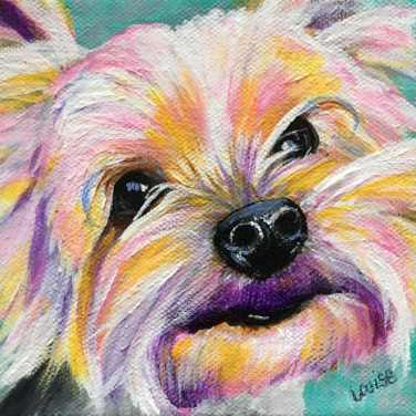 Custom pet portrait of Yorkie by Louise's ARTiculations