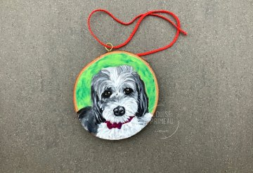 Starbuck custom pet portrait ornament