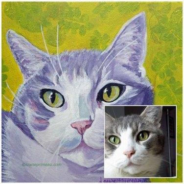 Pampered cat Tony