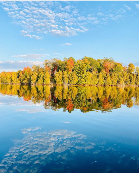 Fall in Ontario by Jennifer Sloan, guest photographer at Louise's ARTiculations