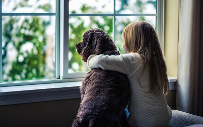 Five ways to make your move to a new home less stressful for your pets