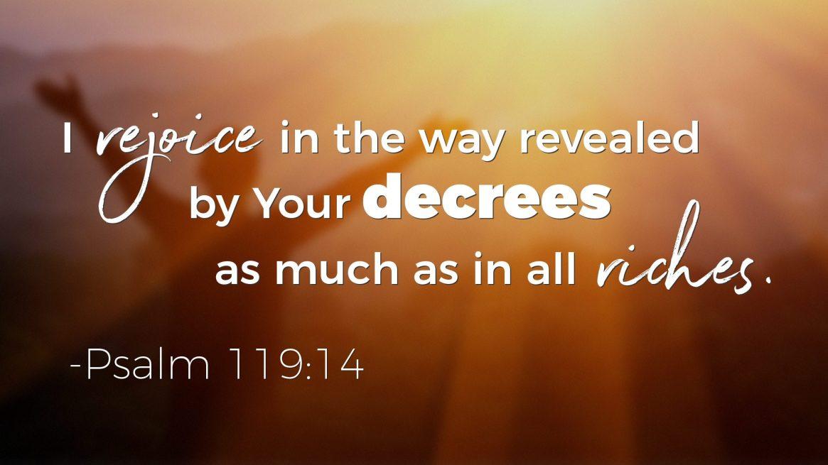 Psalms on Wealth - Psalm 119:14