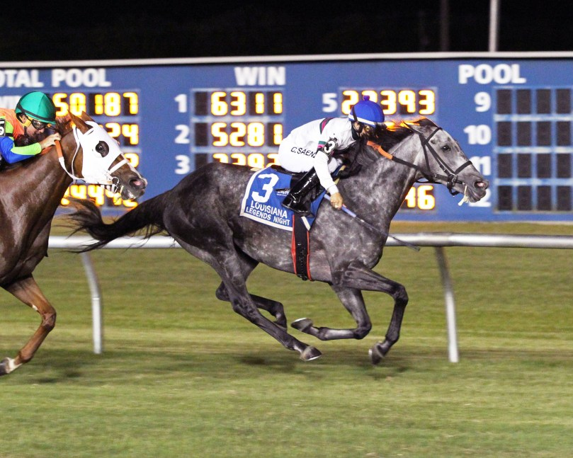 BERMUDA STAR - Louisiana Legends Turf Distaff