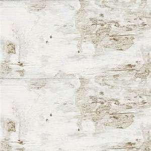 Floor & Wall Tile