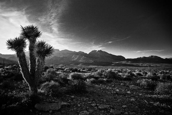 Faire de la belle photo paysage en noir et blanc (3/6)