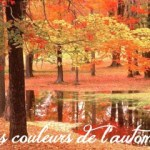 """SWAP """"Les couleurs de l'automne"""""""