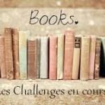 Point sur les challenges #1