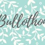 Bullothon #3