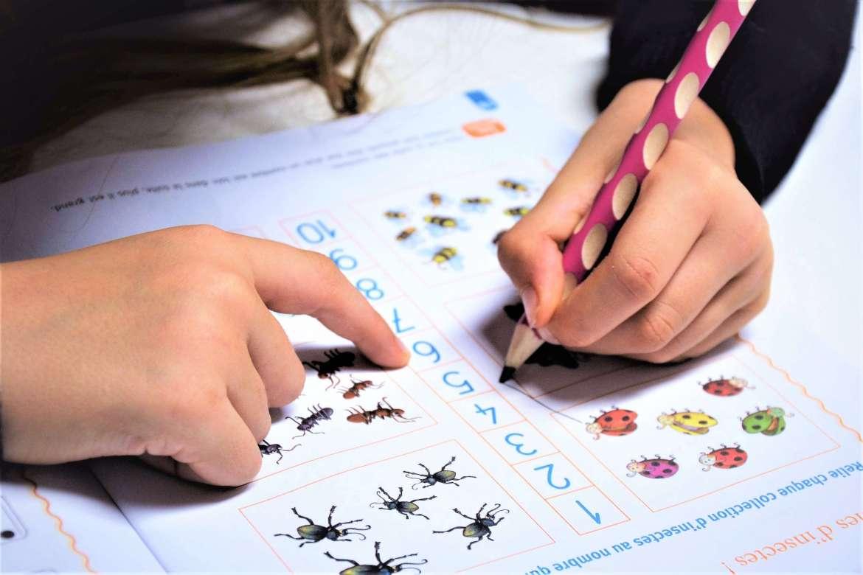 materiel scolaire adapté aux gauchers