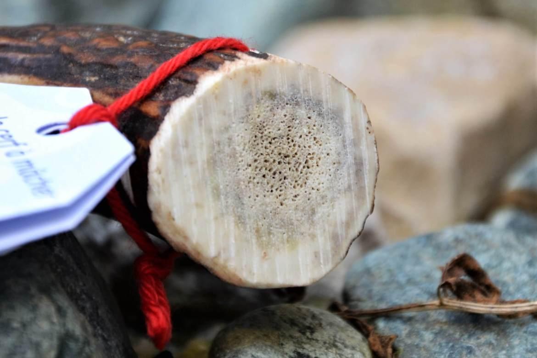 bois de cerf naturel pour chien Klep's