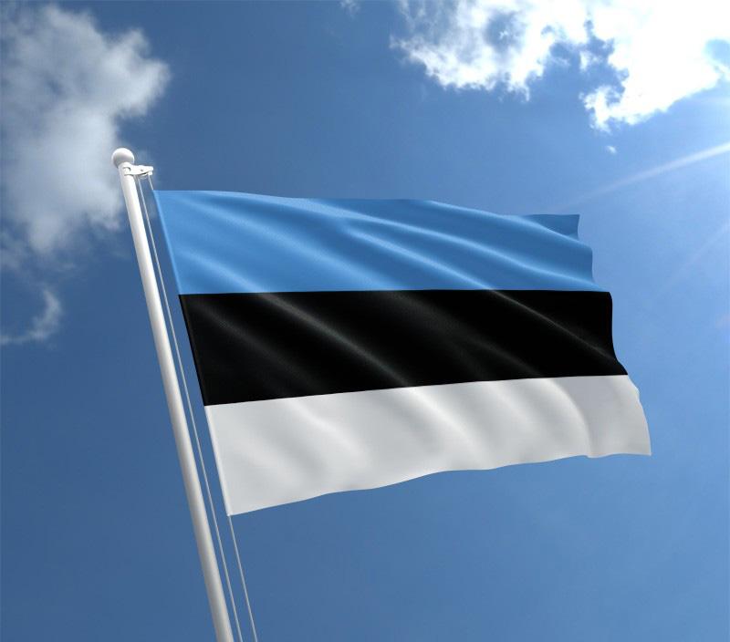 Ülemaailmse eestluse koostöökomisjon asub koostama Globaalse Eesti programmi