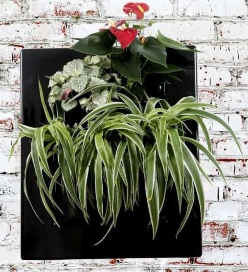 BV310 Easy Dark vegetal picture frame green decor