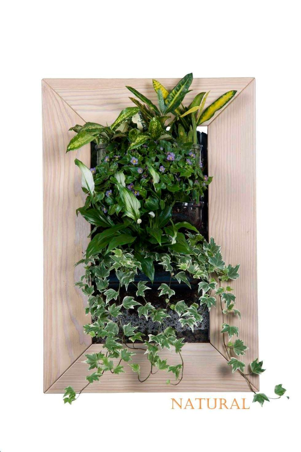 quadro vegetale per decoro pareti casa e terrazzo