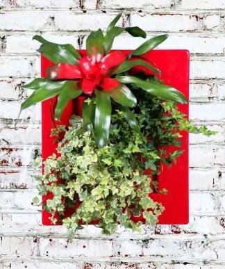 fioriera da parete per decorare con il verde