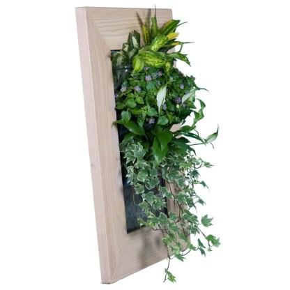 Hanging flofwerpot planters