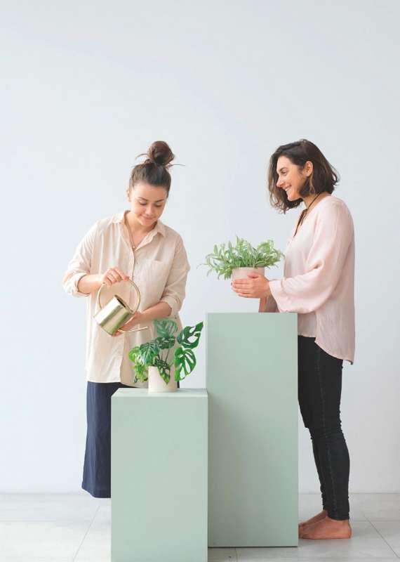 Projekt Rośliny- jak zaprzyjaźnić się zkwiatami Projekt Rośliny- jak zaprzyjaźnić się zkwiatami 2