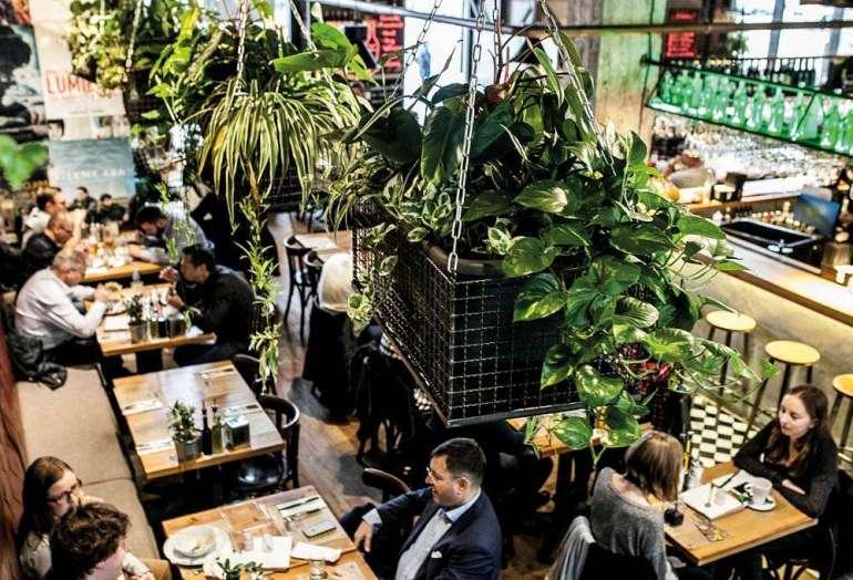 Najzieleńsze restauracje wPolsce Najzieleńsze restauracje wPolsce 2