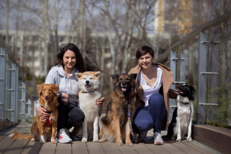 Tylko dla miejskich psiarzy Tylkodla miejskich psiarzy 2