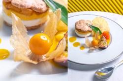 Restaurant Le Loup de Mer Le Rayol Canadel